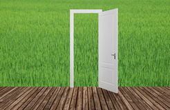 Landscape behind the opening door,3D. Render Royalty Free Stock Photos