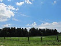 Landscape of the Belarusian landscape Stock Image