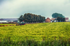 Landscape in Belgium farm region Royalty Free Stock Images