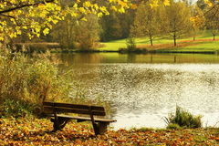 Landscape with bench Stock Image