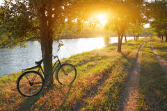 Landscape with bicycle Royalty Free Stock Images