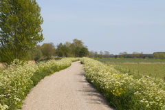 Landscape with bicycle path and grassland Stock Photography