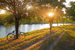 Landscape with bicycle Royalty Free Stock Photo