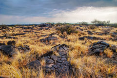 Landscape of Big Island. Hawaii. Royalty Free Stock Photo