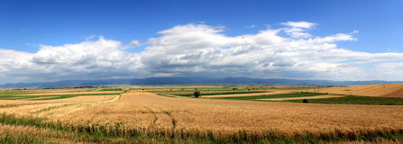 Landscape big panorama Royalty Free Stock Images