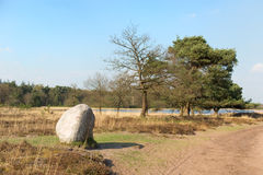 Landscape with big stone and lake Stock Photography