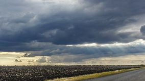 Landscape with big wheat field and road, weather change. Sun rays Royalty Free Stock Photos