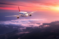 Landscape with big white airplane is flying in the red sky. Passenger airplane. Landscape with big white airplane is flying in the red sky over the clouds and Royalty Free Stock Images