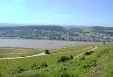 Landscape bingen rhin Stock Photography