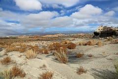 Landscape in  Bisti Royalty Free Stock Photo