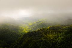 Landscape of Black River park. Beautiful panorama of Black River Gorges park and jungle around it, Mauritius Royalty Free Stock Image