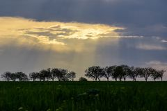 Landscape with Black Silhouettes of Trees at Sunset in Spring Time. The sun`s rays make their way through the cloudy sky stock photography