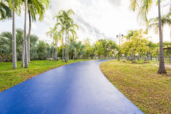 Landscape with blue jogging track at green park Stock Photo