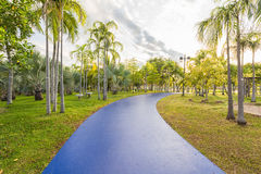 Landscape with blue jogging track at green park Stock Photos