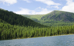 Landscape the blue lake against mountains and wood Royalty Free Stock Photography