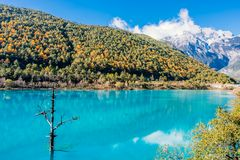 Landscape of Blue Moon Valley in Jade Dragon Snow Mountain, Lijiang, Yunnan, China stock images