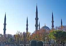 Landscape of the Blue Mosque in Istanbul Royalty Free Stock Photography