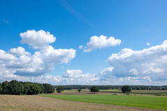 Landscape with blue sky and bright white clouds. Dutch landscape with typical dutch white clouds and blue sky Royalty Free Stock Photo