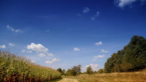 Landscape blue sky with clouds running over the field. Accelerated video the day is overcast. Natural landscape. Cranking clouds. Rapid movement of the clouds stock footage