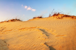 Landscape with blue sky and dunes. Sunset on the dunes. Royalty Free Stock Photos