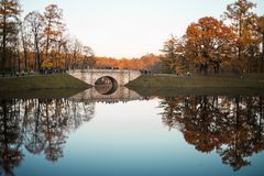 Landscape blue sky water lake reflection sunlight autumn day tree park Saint-Petersburg. Tree yellow leaves lake reflection park landscape autumn day royalty free stock images