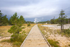 Landscape of Boardwalk, Old Faithful Area. Royalty Free Stock Images