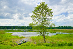 Landscape with boat on the flood waters of Narew river. Royalty Free Stock Images