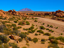 Landscape of bolivian Altiplano Royalty Free Stock Images