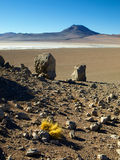 Landscape of bolivian Altiplano Stock Photos