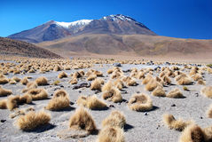 Landscape of bolivian desert Stock Photos
