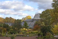 Landscape in Botanic Garden Stock Photography