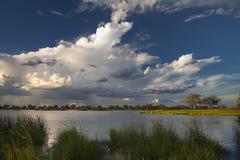 Landscape Botswana. Botswana. Travel for Animals and Landscape Africa Royalty Free Stock Photo