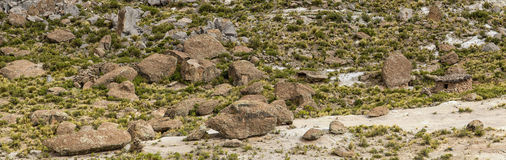 Landscape With Boulders and Human Presence. Landscape with stone boulders between greenery in the mountains of Bolivia. A small stone hut and other signs of Royalty Free Stock Image