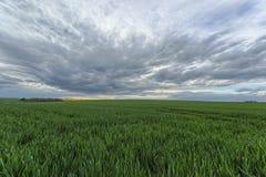 Landscape in Bourgogne Royalty Free Stock Image