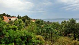 Landscape in Brač island Stock Image