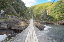 Landscape and bridge in Tsitsikamma national park Royalty Free Stock Photo