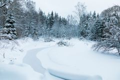 The landscape of the brook in the beautiful winter forest or in the park among the trees under the snow, ice royalty free stock images