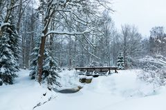 The landscape of the brook and the footbridge in the beautiful winter forest or in the park among the trees under the snow, ice royalty free stock image