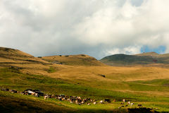 Landscape of Bucegi mountains in Romania Royalty Free Stock Images