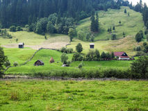 Landscape in Bucovina. Typical countryside landscape in Bucovina, Romania. Somewhere on the scenic route from Moldovita to Argel Village Royalty Free Stock Photos