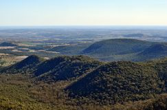 Landscape in Bunya National Park. Queensland, Australia Stock Photos