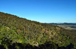 Landscape in Bunya National Park Royalty Free Stock Image