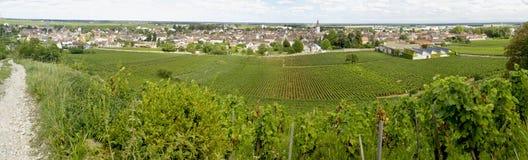 Landscape in burgundy Stock Photos