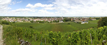 Landscape in burgundy Royalty Free Stock Image