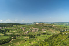 Landscape of burgundy, vineyards Stock Image