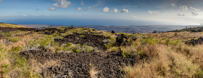 Landscape bushes grass volcanic soil Big Island. Stock Photos