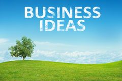 Landscape with business ideas words Stock Images