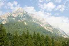 Landscape in busteni, romania Royalty Free Stock Image