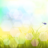 Landscape with butterflies Vector EPS 10 1 Royalty Free Stock Image