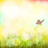 Landscape with butterflies Vector. EPS 10 2 Royalty Free Stock Photography